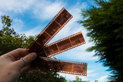 Film Results