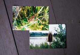 Film Close-ups